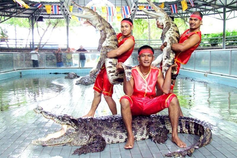Экскурсии в тайланде паттайя