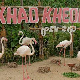 Посещение зоопарка Кхао Кхео