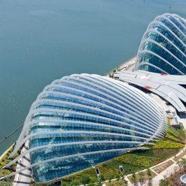 Обзорная экскурсия по Сингапуру