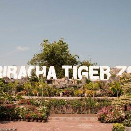 Тигровый зоопарк вгороде СиРача