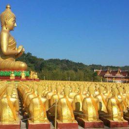 Изумительный Таиланд и Кхао Яй (2 дня и 1 ночь)