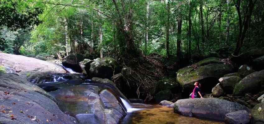 Затерянный мир экскурсия из Паттайи