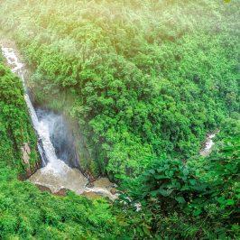 Джунгли зовут — экскурсия в национальный парк Кхауяй