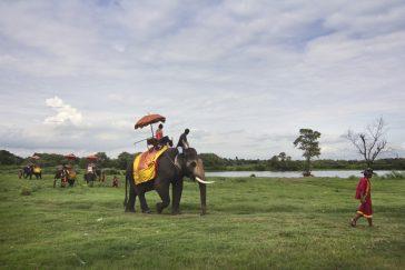 Отзыв об экскурсиях в Паттайе